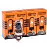 TAD KT66 Tube Amp Doctor - lampa, Premium párovaná štvorica