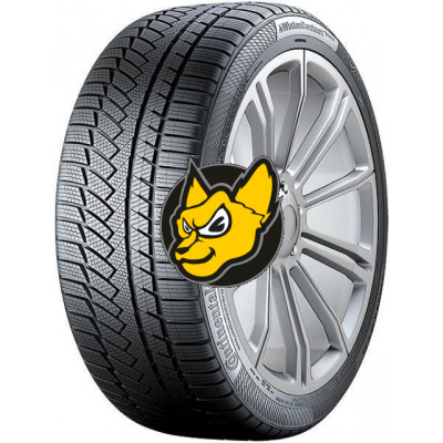 Continental Winter Contact TS 850P 205/55 R17 91H FR