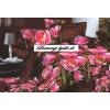 Mariall Plyšové-flísové obliečky PCK38 Rôznofarebnosť 1ks 140x200cm 2ks 70x80cm 180x230cm plachta